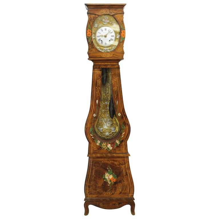 19th Century French Morbier Tall Case Clock For Sale