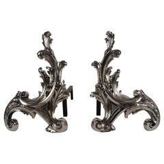 19th Century French Pair Of Rococo-Style Chenets