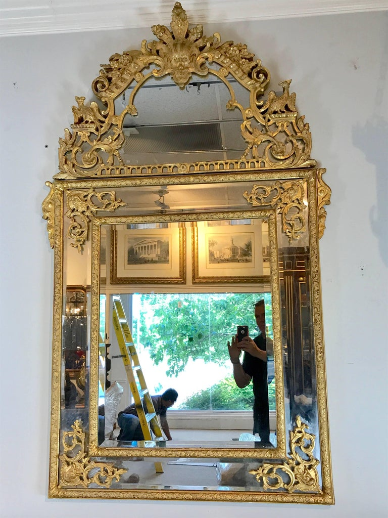 19th Century French Regence Style Giltwood Mirror 2