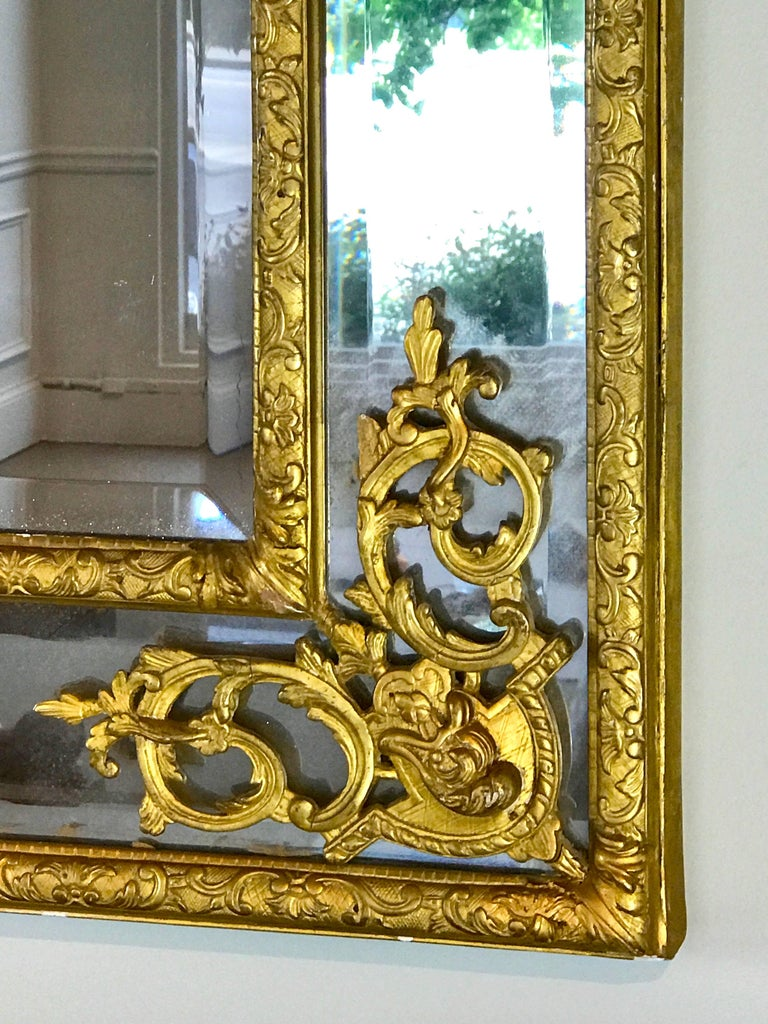 19th Century French Regence Style Giltwood Mirror 4