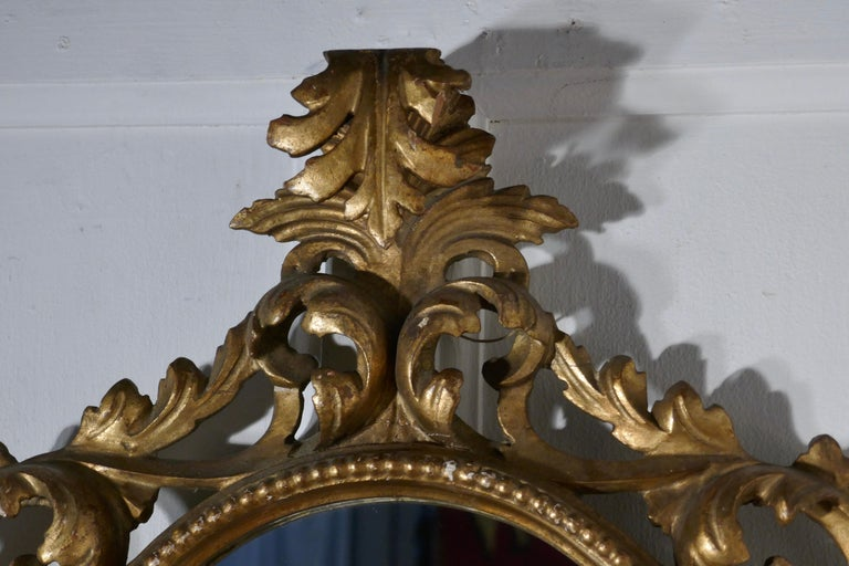Giltwood 19th Century French Rococo Gilt Wall Mirror For Sale