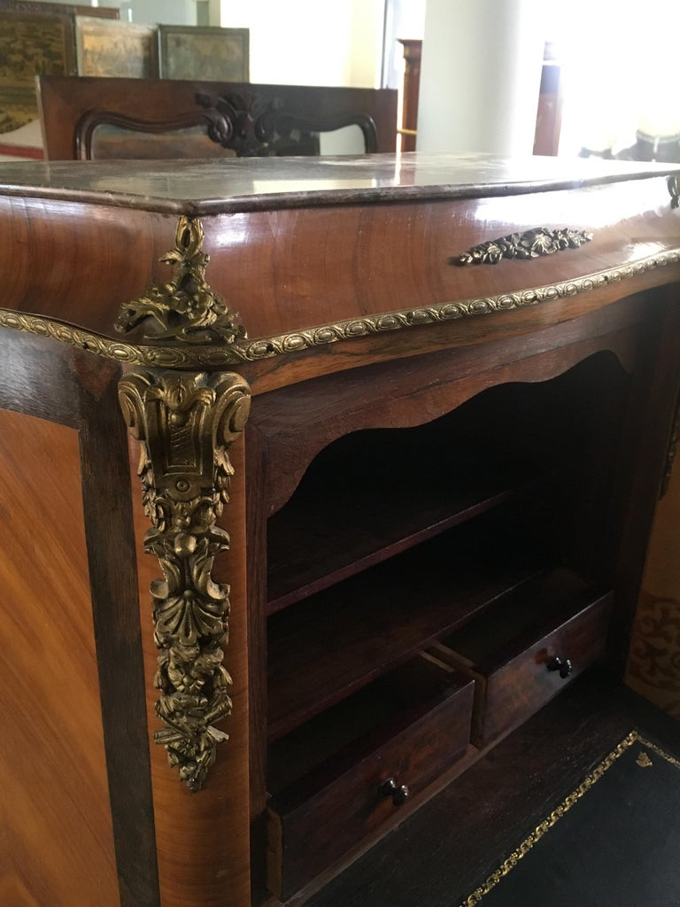 19th Century French Secretaire with Bronze Decoration in Louis XVI Style For Sale 1