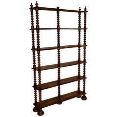 19th Century French Shallow Bookshelf