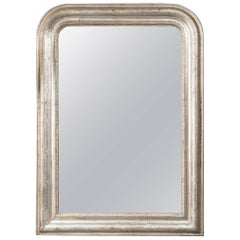 19th Century French Silver Giltwood Mirror