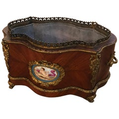 19th Century French Tulip Wood Jardinière Planter with Liner