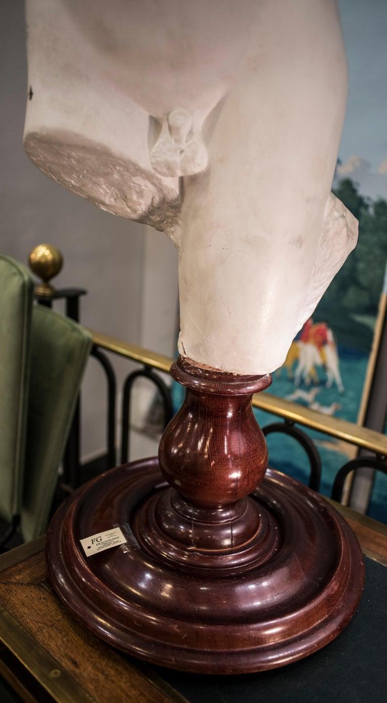 Napoleon III 19th Century French White Gesso Torso Sculpture, Academicist, circa 1890 For Sale