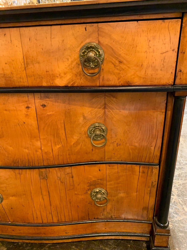 19th Century German Biedermeier Walnut and Ebonized Commode In Good Condition For Sale In Dallas, TX