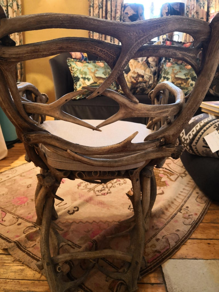 19th Century German Black Forest Antler Trophy Armchair For Sale 6