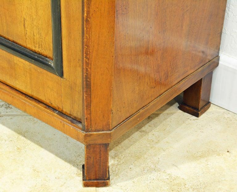 Brass 19th Century German Fruitwood and Ebonized Biedermeier Two-Door Book Case For Sale