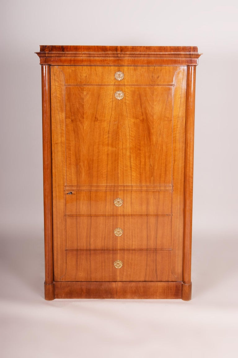 Completely restored German one-door Biedermeier wardrobe cabinet.