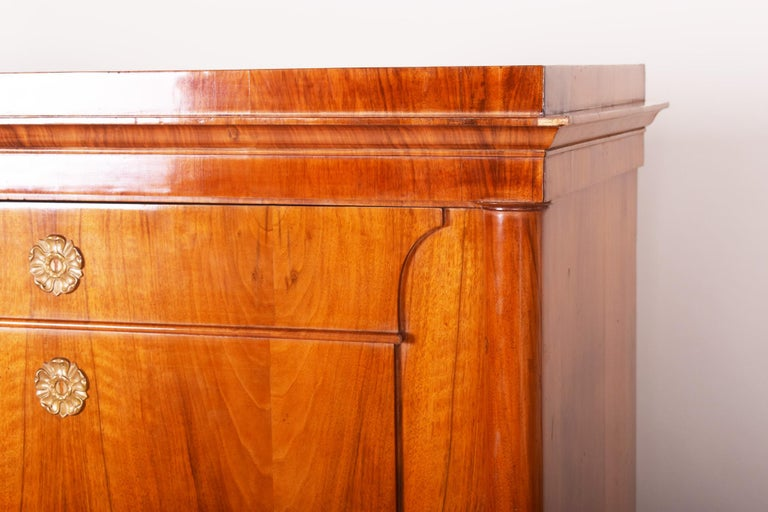 Czech 19th Century German One-Door Biedermeier Walnut Wardrobe Cabinet Restored, 1840s For Sale