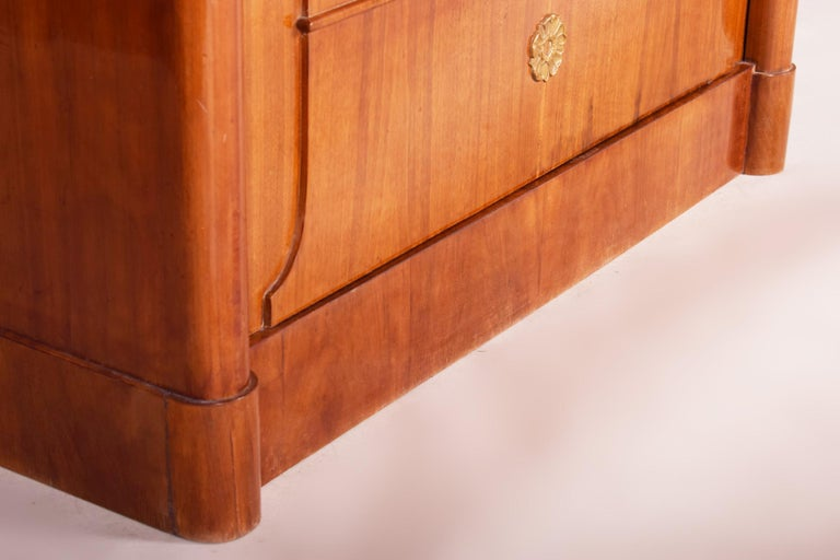 19th Century German One-Door Biedermeier Walnut Wardrobe Cabinet Restored, 1840s For Sale 2
