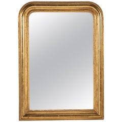 19th Century Gilt Louis Philippe Mirror