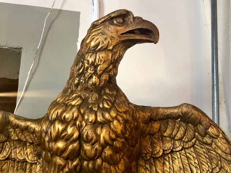 The finest 19th century giltwood Federal carved wall eagle or mounting. This finely carved palatial wall eagle sits perched atop a branch with his claws firmly set into the intricate carved stump. With bended knees and a barrel chest the presence