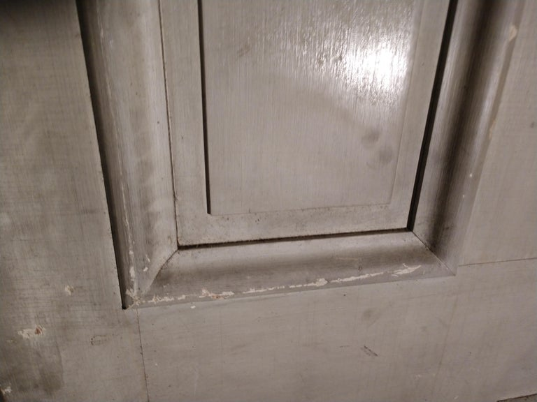 19th Century Grain Painted Paneled Wood Door In Good Condition For Sale In Port Jervis, NY
