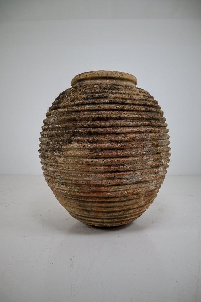 19th Century Greek 'King-Size' Ribbed Olive Jar with Dark Lichen Patination 2
