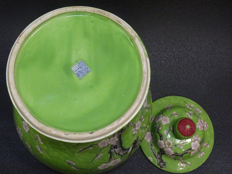 19th Century Green White Pink Chinese Guang-Xu Porcelain Lid Vase For Sale 7