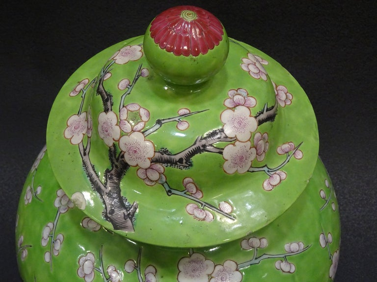 19th Century Green White Pink Chinese Guang-Xu Porcelain Lid Vase For Sale 12