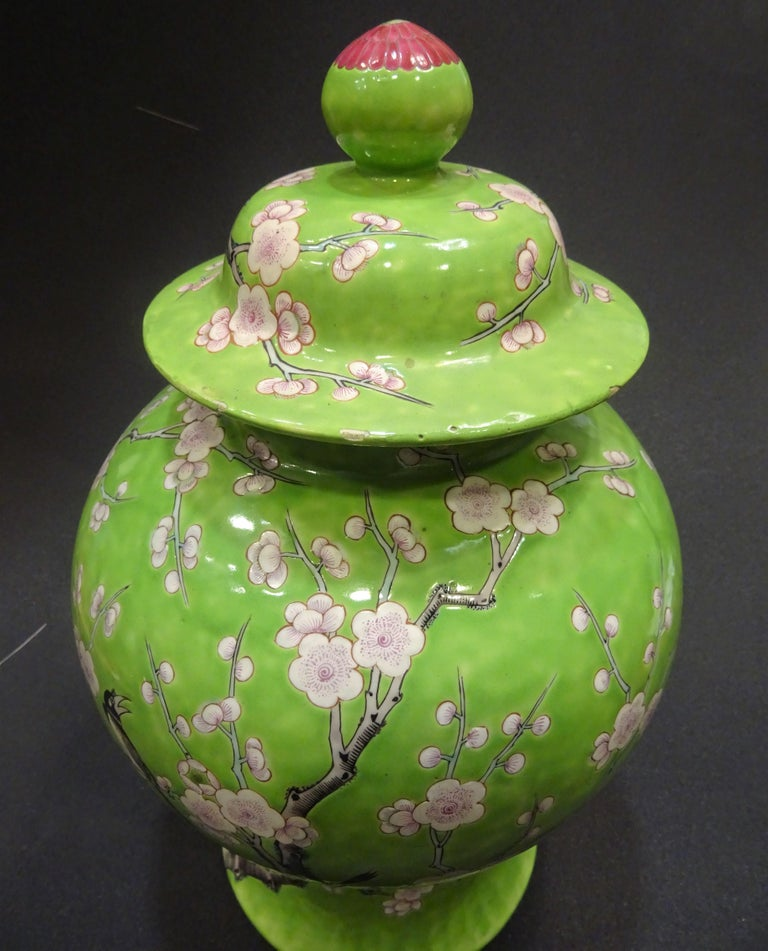 Stunning hand painted Chinese Porcelain lid vase. Guang-Xu period, (1875-1908), green family, with makes at the base. Hand painted in a beautiful light green with almonds tree and crows in black and white color, the lids ends with a beautiful pink