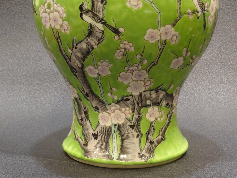 Hand-Painted 19th Century Green White Pink Chinese Guang-Xu Porcelain Lid Vase For Sale