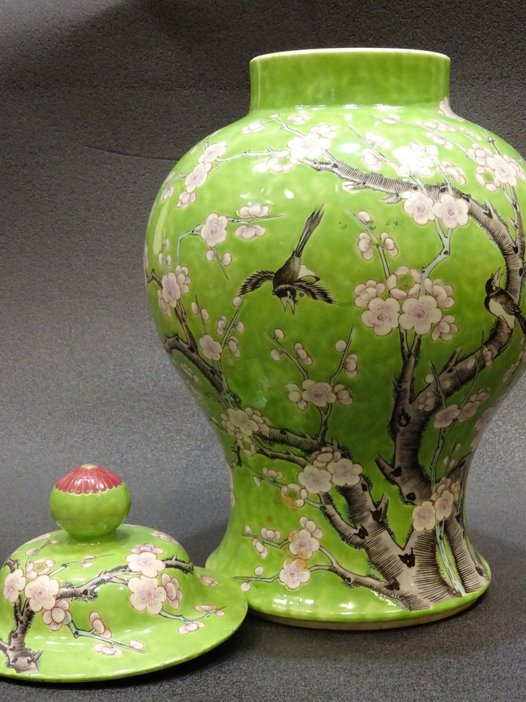 19th Century Green White Pink Chinese Guang-Xu Porcelain Lid Vase For Sale 2