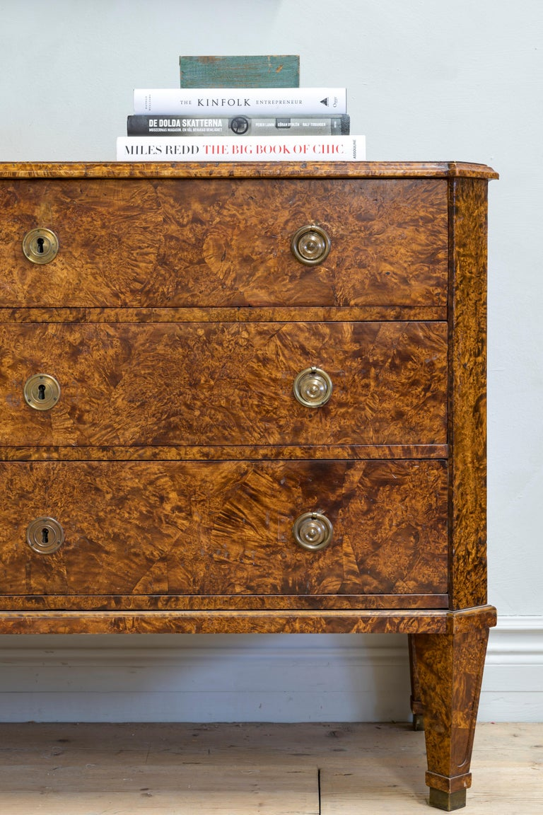 19th Century Gustavian Chest of Drawers For Sale 3