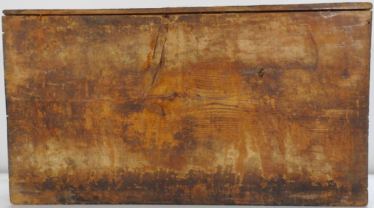 Hand Painted Asian Trunk, 19th Century For Sale 3