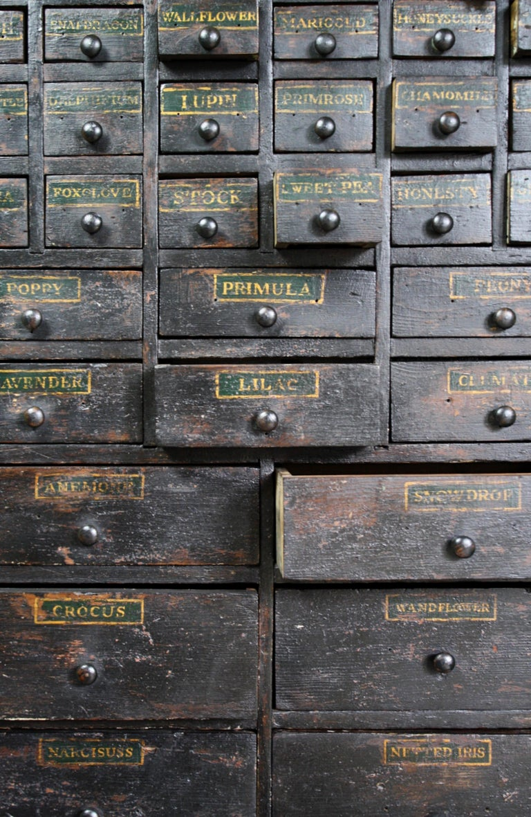 19th Century Horticulturalist Merchants Bank of Seed Shop Drawers For Sale 5