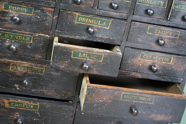 19th Century Horticulturalist Merchants Bank of Seed Shop Drawers For Sale 6
