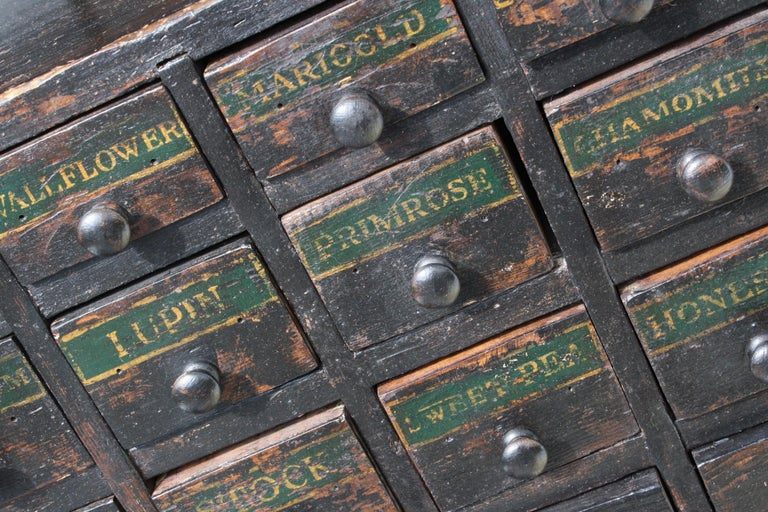 19th Century Horticulturalist Merchants Bank of Seed Shop Drawers For Sale 10