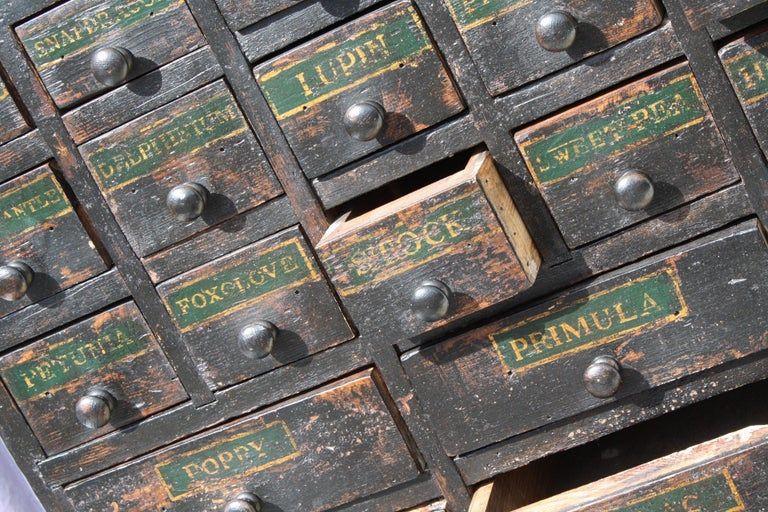 19th Century Horticulturalist Merchants Bank of Seed Shop Drawers For Sale 11