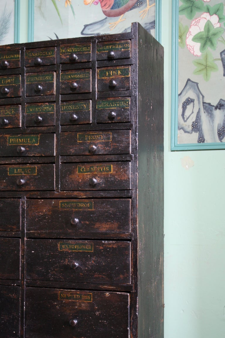 Folk Art 19th Century Horticulturalist Merchants Bank of Seed Shop Drawers For Sale