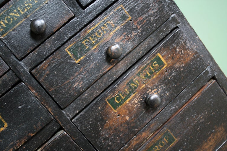 English 19th Century Horticulturalist Merchants Bank of Seed Shop Drawers For Sale