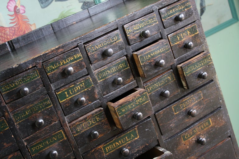 19th Century Horticulturalist Merchants Bank of Seed Shop Drawers In Fair Condition For Sale In Lowestoft, GB