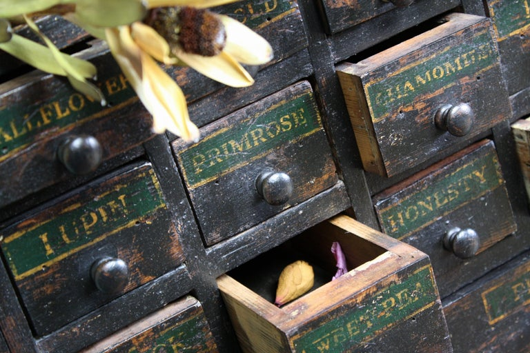 19th Century Horticulturalist Merchants Bank of Seed Shop Drawers For Sale 1