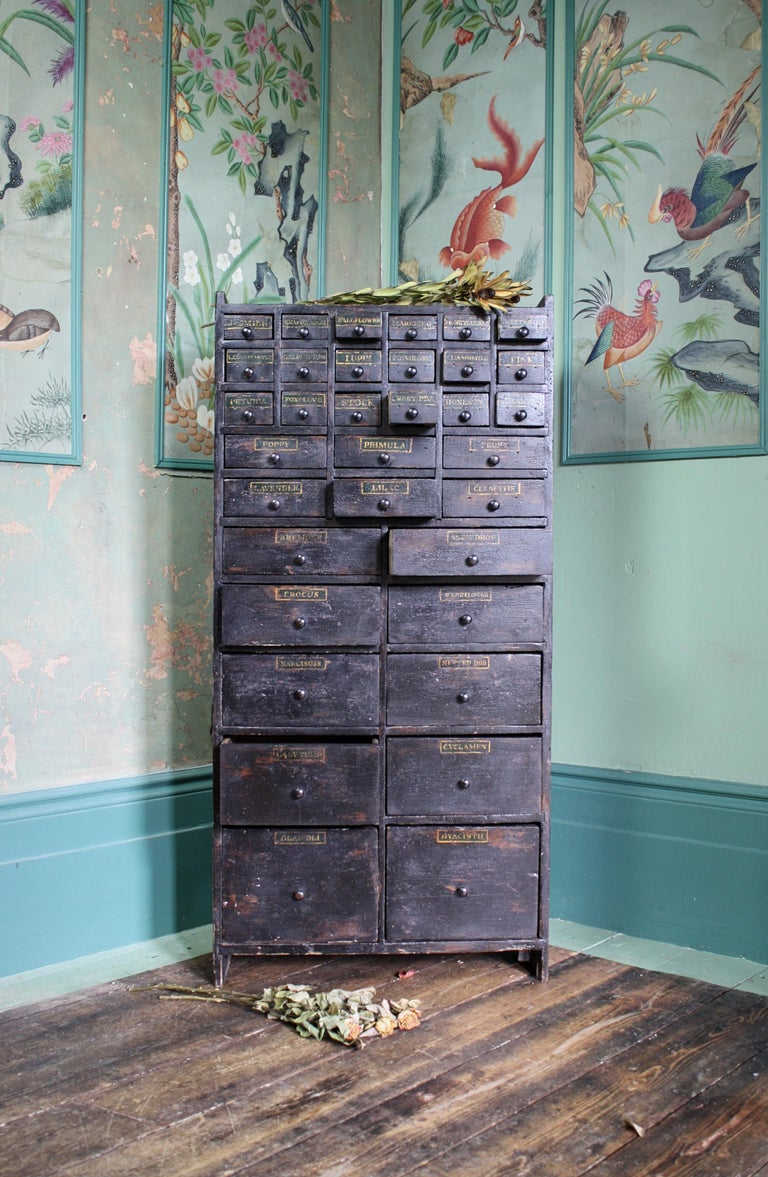 19th Century Horticulturalist Merchants Bank of Seed Shop Drawers For Sale 2