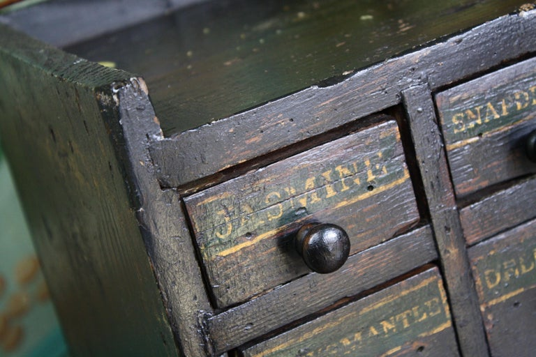 19th Century Horticulturalist Merchants Bank of Seed Shop Drawers For Sale 3