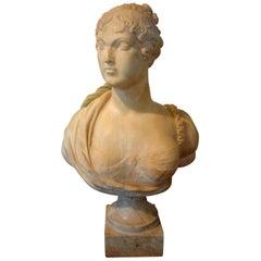 19th Century Italian Alabaster Bust