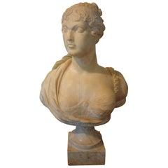19th Century Italian Alabaster Bust on Plinth
