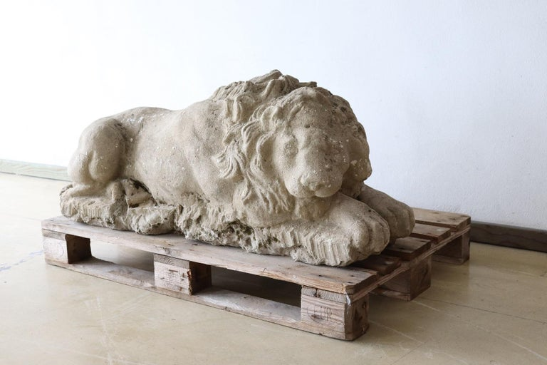 Refined lion sculpture in hand carved stone dating 1780s. Performed with great artistic skill to note the details of the lion's mane and muscles. This lion is represented in all its grandeur in a moment of tranquility. Proven Italian private