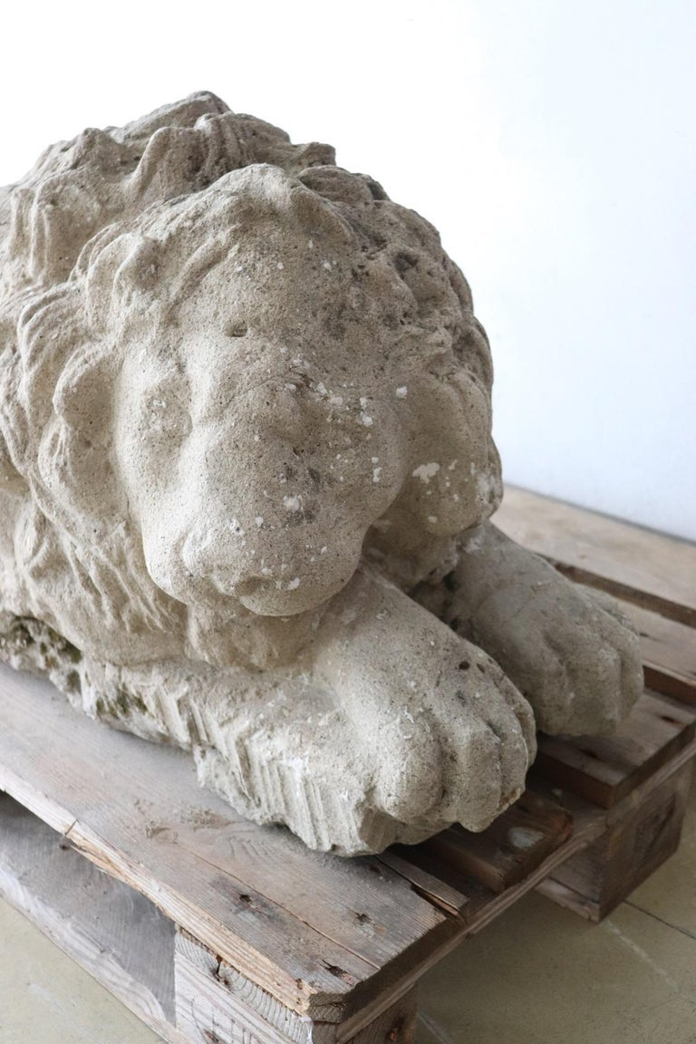 Late 18th Century 18th Century Italian Antique Lion Sculpture in Stone For Sale