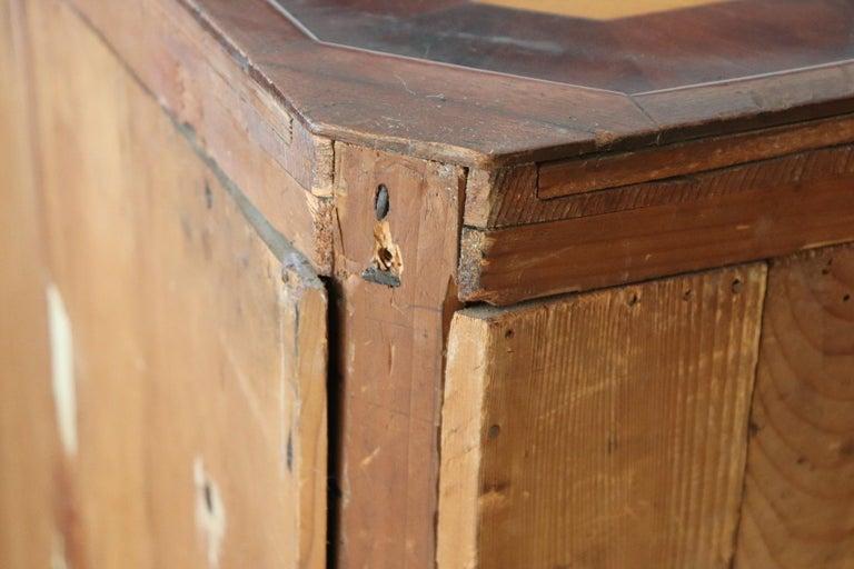 19th Century Italian Charles X Mahogany Pair of Corner Cupboard Corner Cabinet For Sale 11