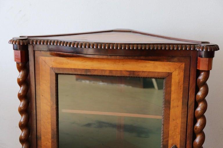 19th Century Italian Charles X Mahogany Pair of Corner Cupboard Corner Cabinet For Sale 1