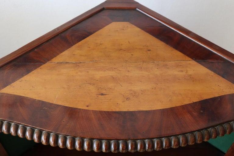 19th Century Italian Charles X Mahogany Pair of Corner Cupboard Corner Cabinet For Sale 5