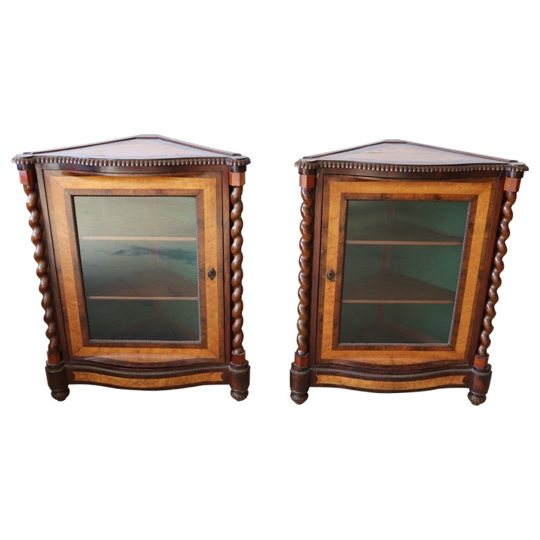 19th Century Italian Charles X Mahogany Pair of Corner Cupboard Corner Cabinet For Sale