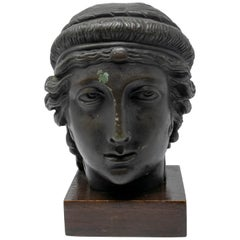 19th Century Italian Classical Greek Bust in Bronze on a Wooden Base