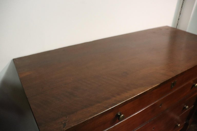 19th Century Italian Empire Walnut Commode or Chest of Drawers For Sale 2