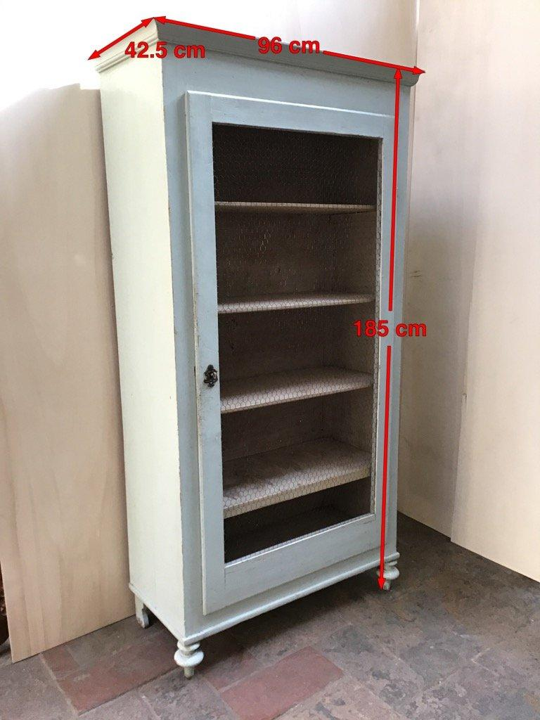 19th Century Italian Painted Wood Wardrobe with Shelves and Metal Mesh Door For Sale 5