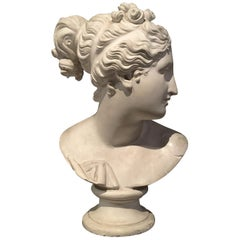 19th Century Italian Plaster Bust after an antique model, depicting a woman