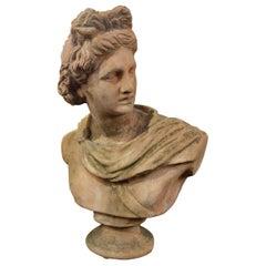 19th Century Italian Renaissance Style Old Impruneta Terracotta Bust of Apollo